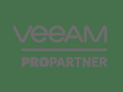 partner-veam